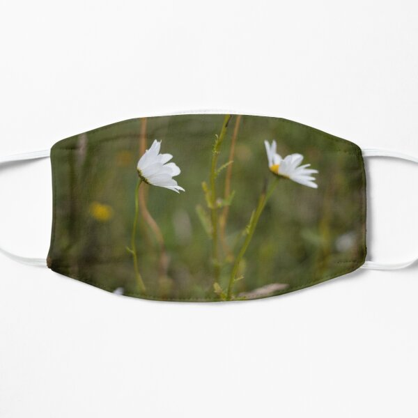 White daisies on a green blurred background Mask