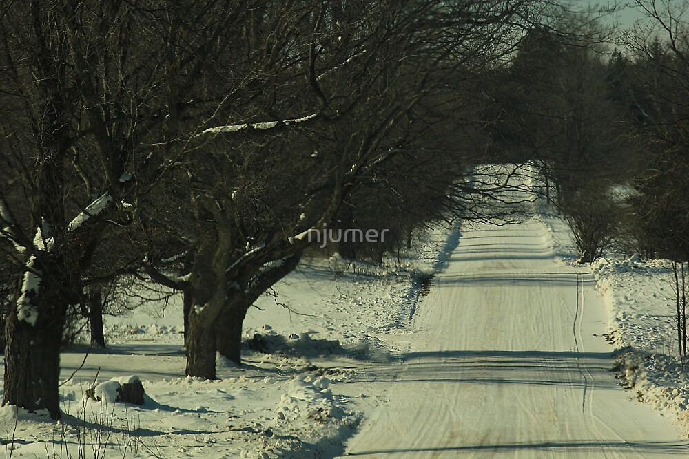 Icy Roads Of The North by njumer