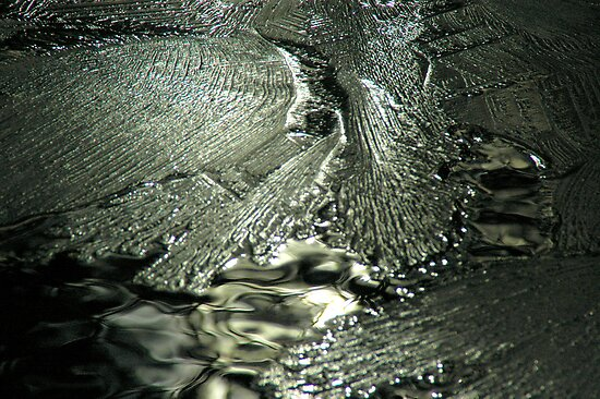 Contrast on Ice - I by Paul Gitto