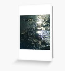 Contrast on Ice - IV Greeting Card