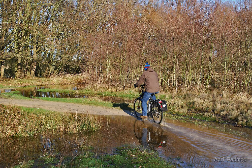 A biker on the Vroonpolder by Adri  Padmos
