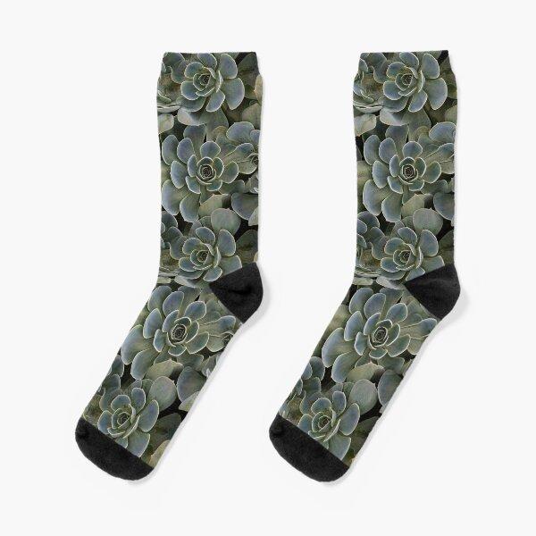 Succulent (pattern) Socks