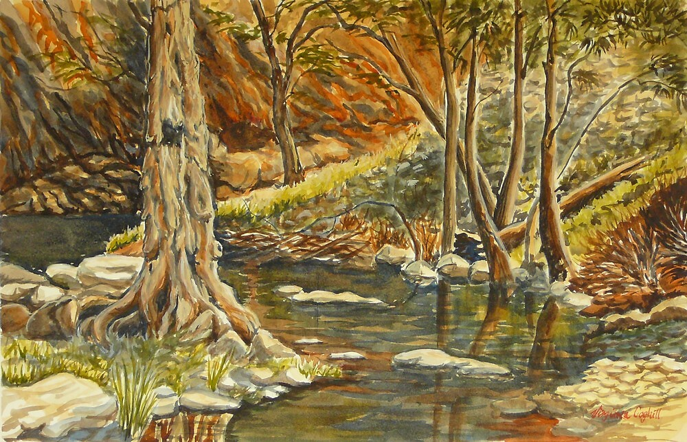 Grove Creek, Abercrombie Caves by Virginia  Coghill