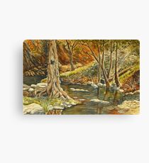 Grove Creek, Abercrombie Caves Canvas Print