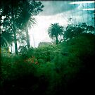 Melbourne drive by 01 by Aneta Bozic