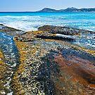 Seaweed Passage by John Pitman