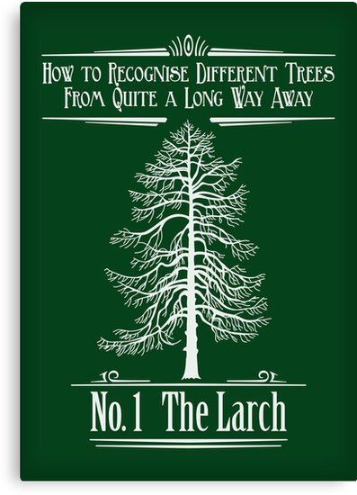 No. 1 The Larch by DoodleDojo