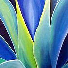 Agave by amira