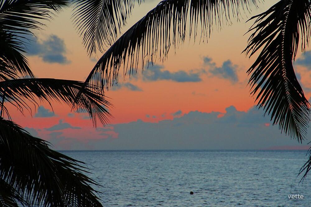 Cuban Sunrise So Beautiful by vette