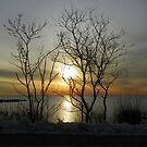 Kennebunkport Sunrise by MaryinMaine