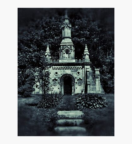 Silent Paradise  Photographic Print
