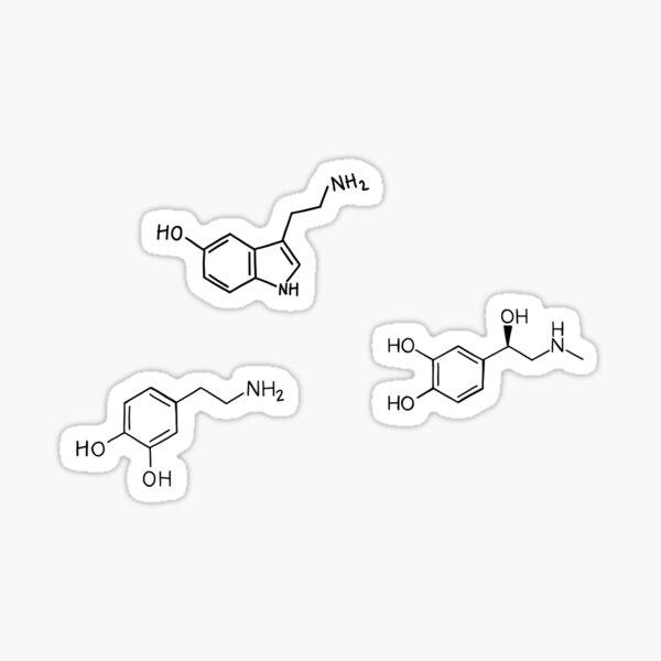 Neurotransmitters Sticker