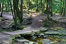 Rustic Stone Bridge On Highland Trail by Gene Walls