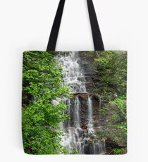 Great Ganoga Falls Through The Trees Tote Bag