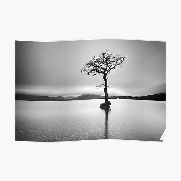 The Tree, Loch Lomond Poster