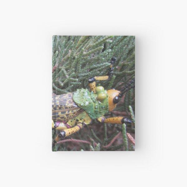 Colourful locust in a bush. Hardcover Journal