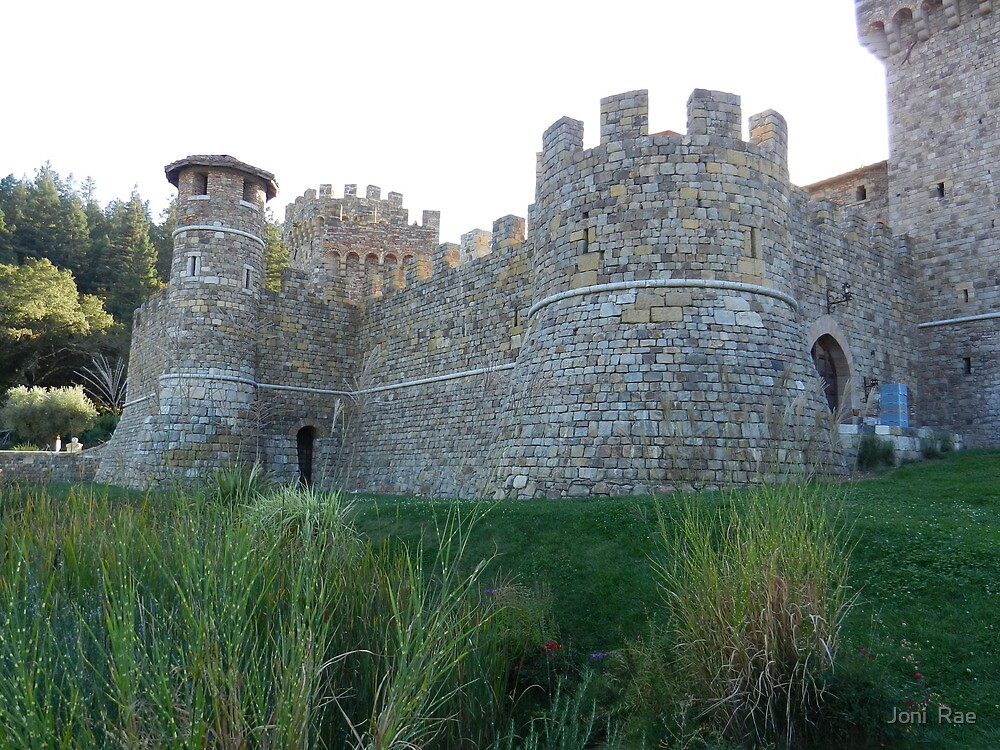 Castello di Amorosa by Joni  Rae
