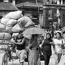 Heavy load... by John Callaway