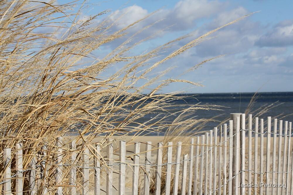 To the Beach! by Jessica Petrohoy