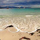 waubs bay, G12 style. eastcoast, tasmania by tim buckley   bodhiimages