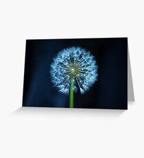 Dandelion flower head Greeting Card