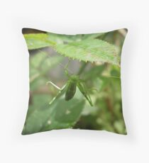star Throw Pillow