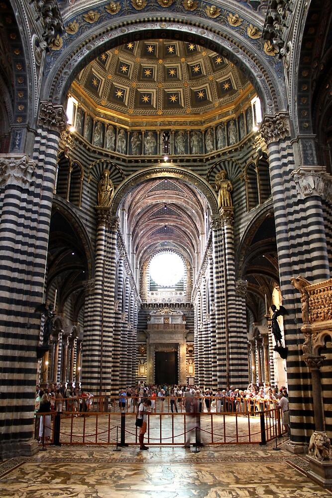 Il Duomo di Siena by Andrea  Muzzini
