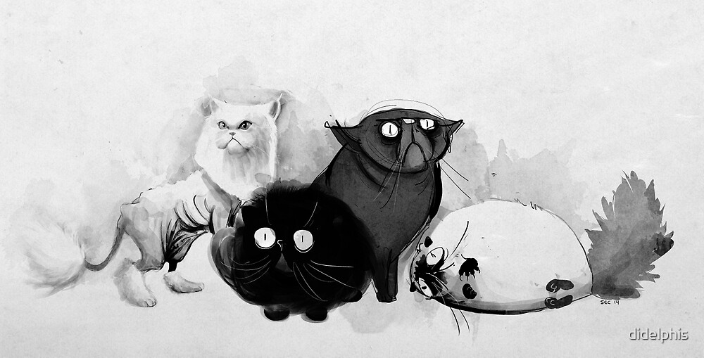 Persian cats by didelphis