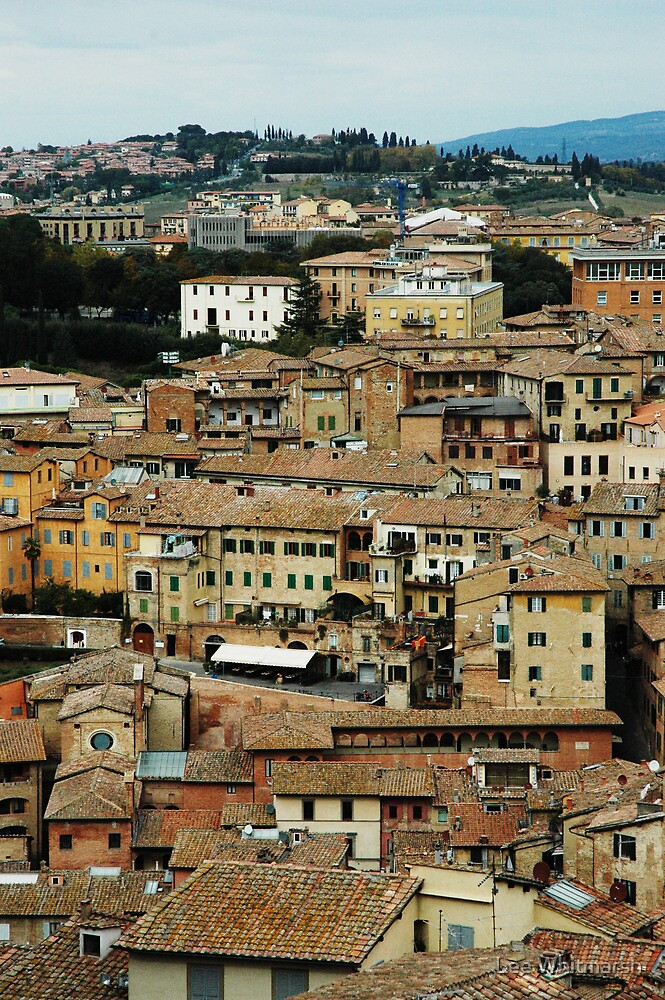 Italy – Siena by Lee Whitmarsh