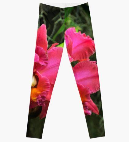 Orchid I Leggings