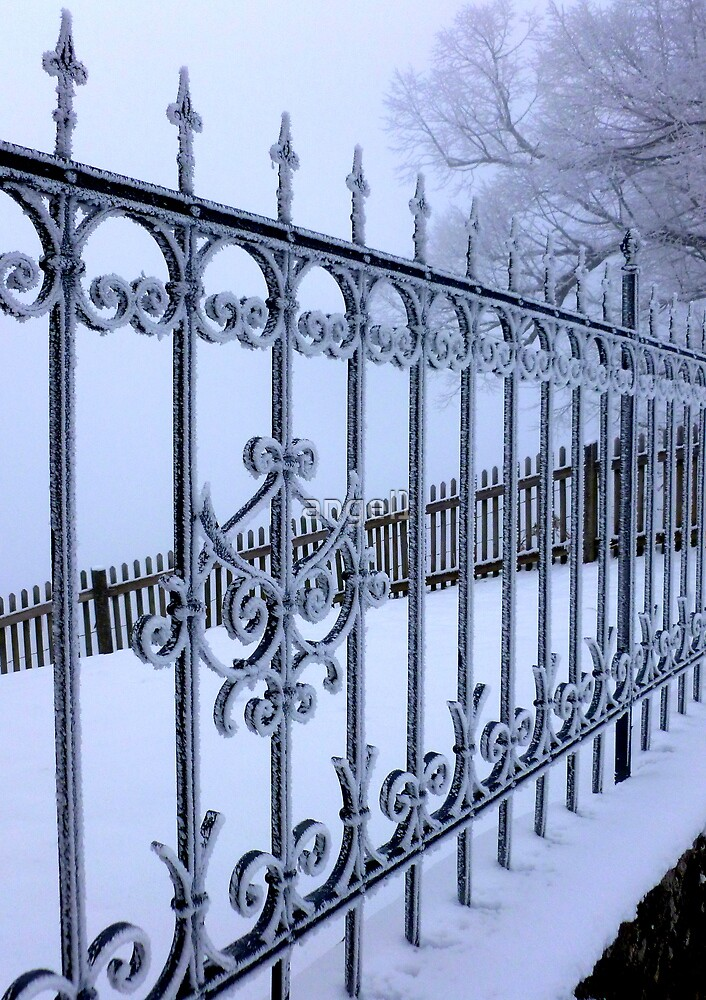 Fenced in Frost by ©The Creative  Minds