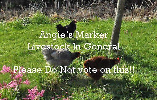 Marker Livetock in General by sarnia2