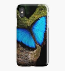 Butterfly Extraordinaire  iPhone Case/Skin