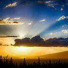 Maui Sunset  - 1/10/13 by NealStudios