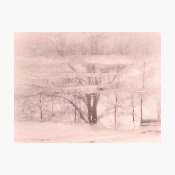 Winter reflections in rose Photographic Print