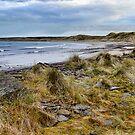 Dunnet Beach by Chris Cardwell