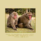 Monkey - japanese zodiac by frommyhorizon