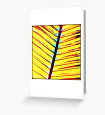 Palm Greeting Card