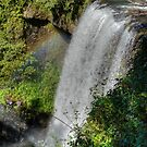 Zillie Falls, Atherton Tablelands, Queensland by Adrian Paul