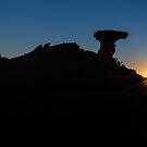 Camel Rock by Tracy Riddell