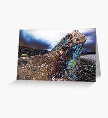 driftwood #3 Greeting Card