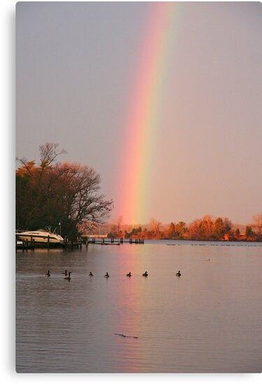 Morning Rainbow #2 by Eileen McVey