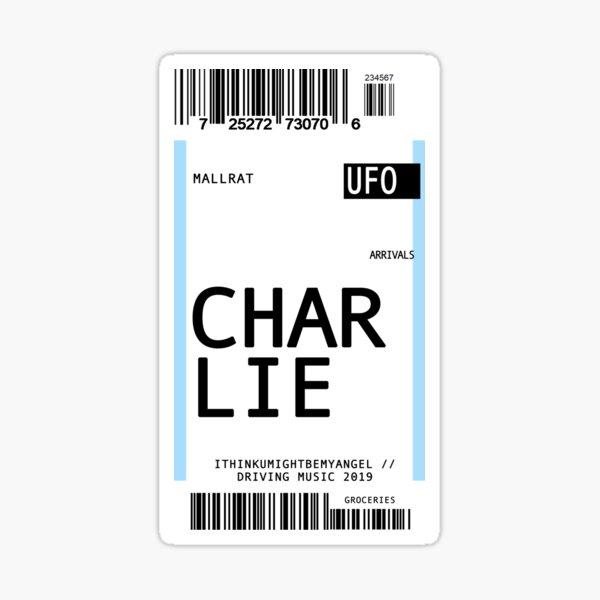 mallrat charlie plane ticket Sticker