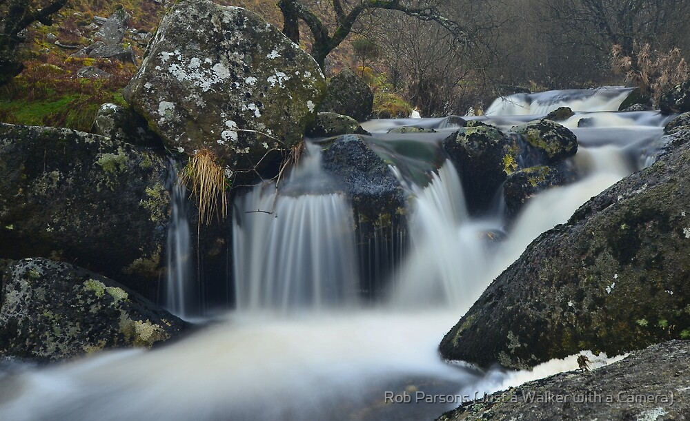 Dartmoor: The River Taw by Rob Parsons
