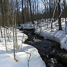 Sugar Hill Stream by quiltmaker