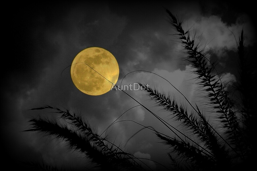 A Golden Supermoon by AuntDot