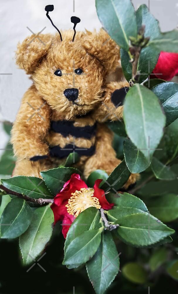 Bumble Bear by Heather Friedman
