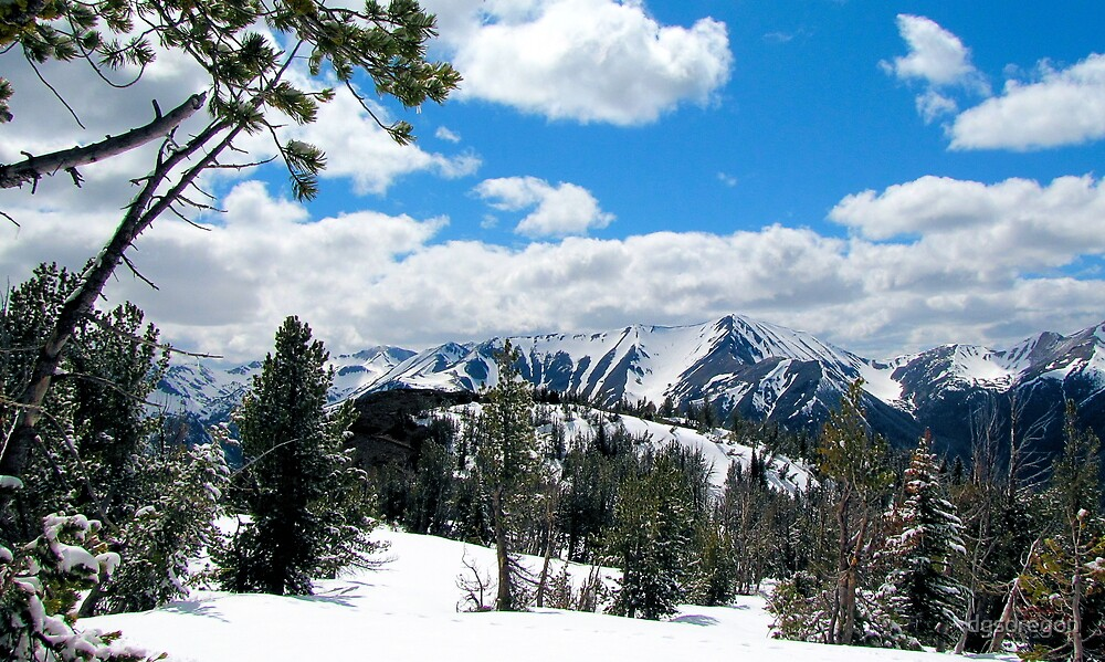 Wallowa Mountains and Eagle Cap Wilderness  by Donald Siebel