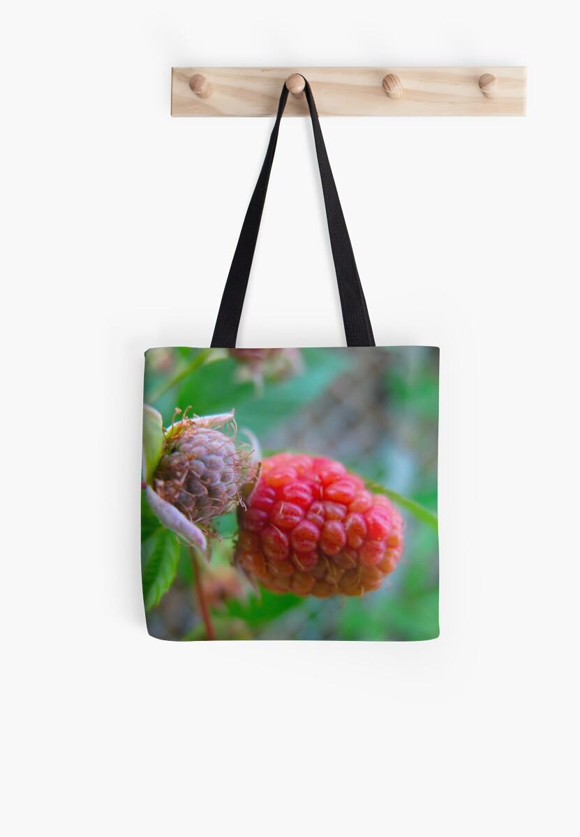 Raspberry Fool by MarianBendeth