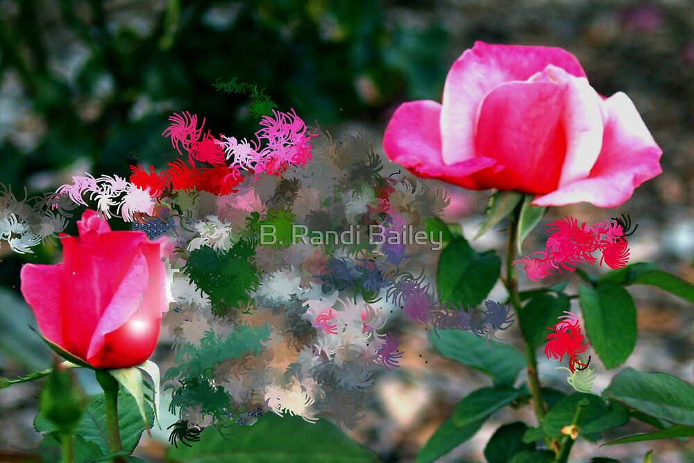 Pink duo roses by ♥⊱ B. Randi Bailey